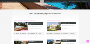página web inmobiliaria IDYMA Websolutions